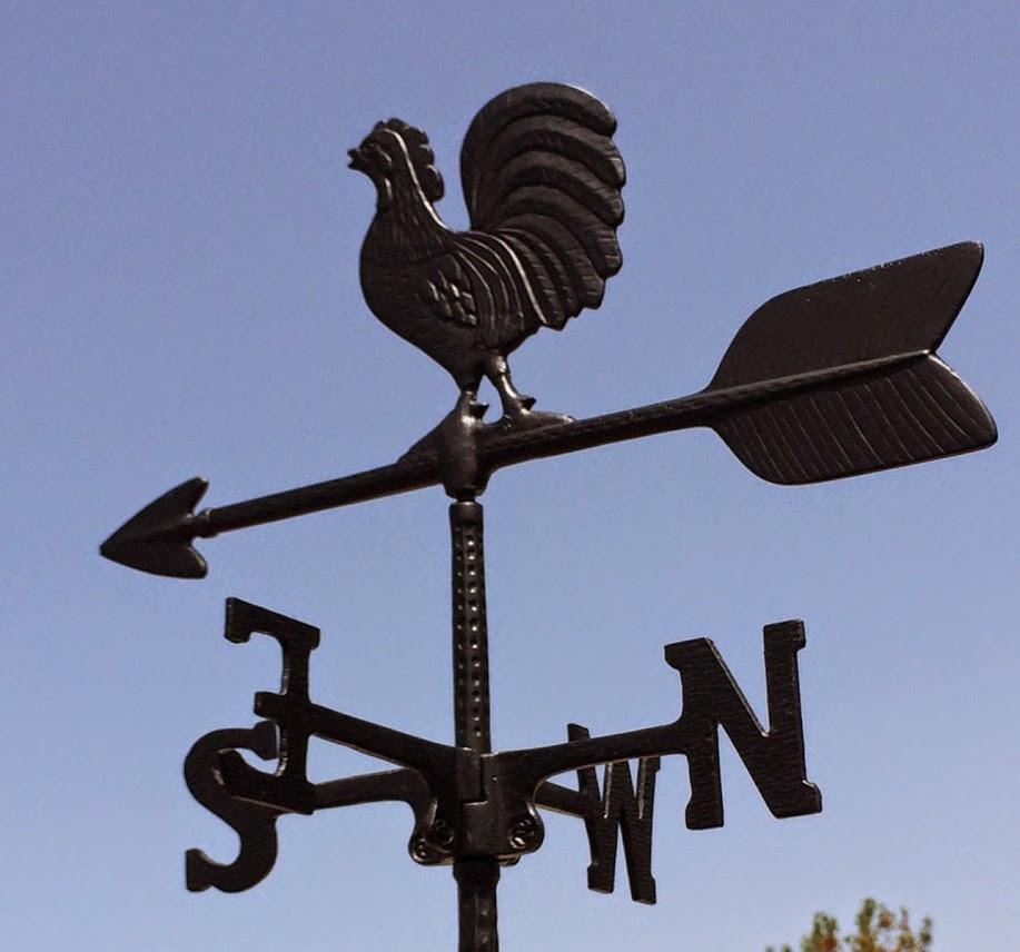 שבשבת רוח תרנגול